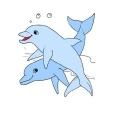 delf strona